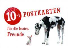 10+1 Postkarten für die besten Freunde