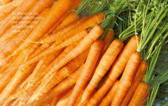 Vesperbrettchen / Frühstücksbrettchen Karotten