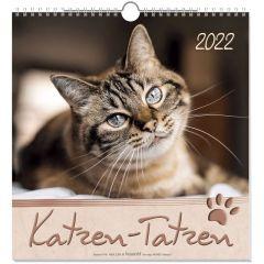 Katzen-Tatzen 2020  9783880872981