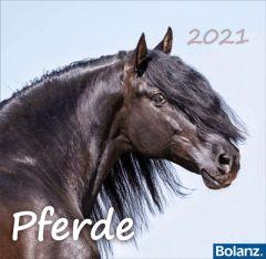 Pferde 2021  9783932640667