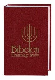 Bibel Norwegisch - Bibelen Nynorsk  9783438081551