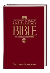 Bible  9783438081230