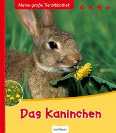 Das Kaninchen Tracqui, Valérie 9783480225620