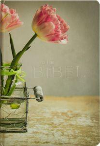 Die Bibel Franz Eugen Schlachter 9783893970629