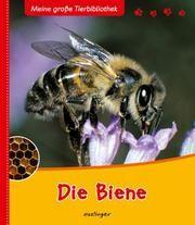 Die Biene Starosta, Paul 9783480224074