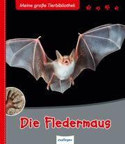 Die Fledermaus Poschadel, Jens (Dr.)/Nill, Dietmar/Braun, Carsten 9783480228256