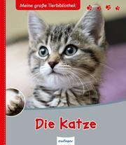 Die Katze Frattini, Stéphane 9783480226368