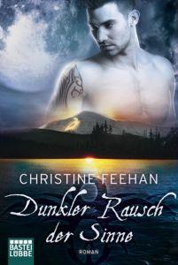 Dunkler Rausch der Sinne Feehan, Christine 9783404187188