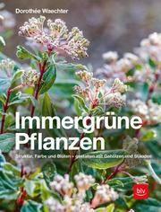 Immergrüne Pflanzen Waechter, Dorothée 9783835419667