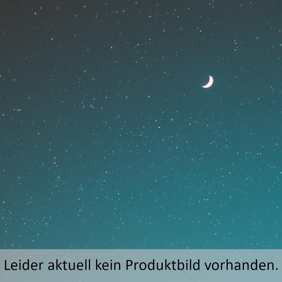Luther für Neugierige Vogt, Fabian 9783374028443