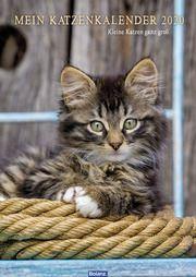 Mein Katzenkalender 2020  9783866031715