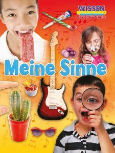 Meine Sinne Owen, Ruth 9789463413831