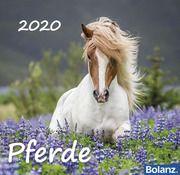 Pferde 2020  9783932640667