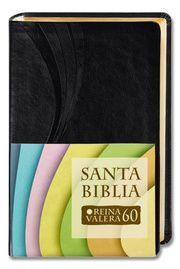 Santa Biblia - Reina Valera 1960 Casiodoro de Reina 9783438081643