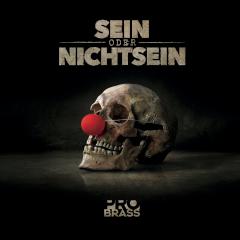 """CD """"Sein oder nicht sein"""""""