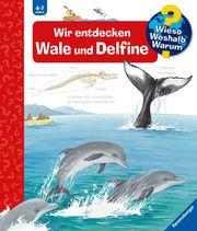 Wir entdecken Wale und Delfine Rübel, Doris 9783473327751