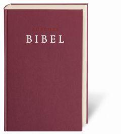 Zürcher Bibel - Großdruckbibel  9783438012890